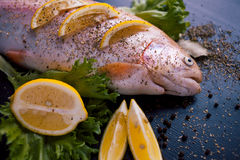 Fresh trout and ingredients to prepare fish dishes on black table. Fresh trout and ingredients to prepare fish dishes on a black table Stock Photography
