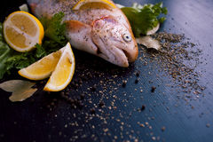 Fresh trout and ingredients to prepare fish dishes on black table. Fresh trout and ingredients to prepare fish dishes on a black table Stock Images