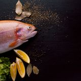 Fresh trout and ingredients to prepare fish dishes on black table. copy space. Fresh trout and ingredients to prepare fish dishes on a black table Stock Photos