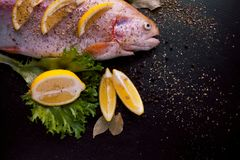 Fresh trout and ingredients to prepare fish dishes on black table. Fresh trout and ingredients to prepare fish dishes on a black table Royalty Free Stock Photo