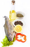 Fresh trout with a lemon Stock Photography