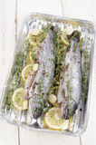 Fresh trout with lemon and thyme Royalty Free Stock Images