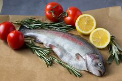 Fresh trout with lemons and greens. Two raw fish. Fresh trout with lemons, tomatoes and greens Royalty Free Stock Photo