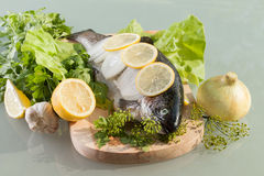 Fresh trout. Prepared for cooking Stock Photo