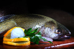 Fresh trout rustic style restaurant Royalty Free Stock Photos