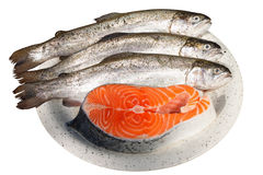 Fresh trout and salmon steak Royalty Free Stock Photography