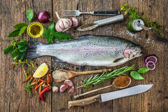 Fresh trout with spices and seasoning Stock Image