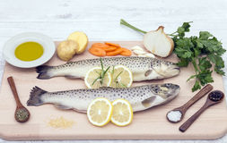 Fresh trout with spices  vegetables and olive oil. Fresh trout with spices and vegetables Royalty Free Stock Photography