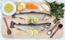Fresh trout with spices and vegetables Royalty Free Stock Photos