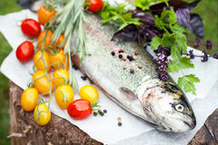 Fresh trout with tomato cherry Royalty Free Stock Images