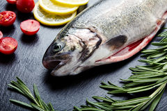 Fresh trout, tomatoes, lemon, rosemary Royalty Free Stock Images