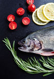 Fresh trout, tomatoes, lemon, rosemary Stock Photography