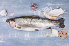 Fresh trout. Royalty Free Stock Photo