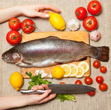Fresh trout with vegetables on cutting board. Female hand with a kitchen knife. Fresh trout with vegetables on cutting board stock photography