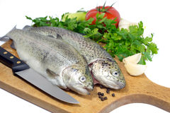 Fresh trout on wooden board with parsley, garlic, tomato, pepper and knife Royalty Free Stock Photos