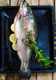 Fresh trout on a wooden board . style rustic Stock Photography
