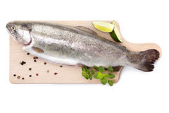 Fresh trout on wooden kitchen board. Fresh raw trout with pepper and fresh herbs on wooden cutting board isolated on white background, top view. Culinary Stock Image
