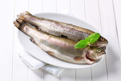 Fresh trouts Royalty Free Stock Photography