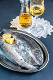 Fresh trouts in ice on the vintage metal tray Royalty Free Stock Photo
