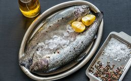 Fresh trouts in ice on the vintage metal tray Royalty Free Stock Photos