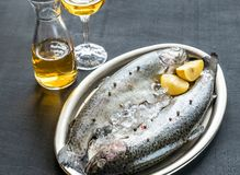 Fresh trouts in ice on the vintage metal tray Stock Photography