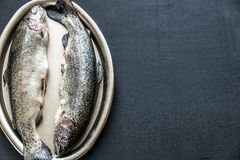 Fresh trouts on the vintage metal tray Stock Image