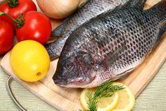 Fresh Ttilapia Stock Photos