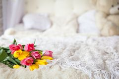 Fresh tulip bouquet on bed. In light tones with white pillows Royalty Free Stock Image