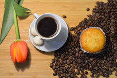 Fresh tulip, cupcake, cup of coffee and some coffee beans. On wooden background Royalty Free Stock Photography