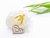 Fresh tulip flower and decorative heart from wood Royalty Free Stock Images