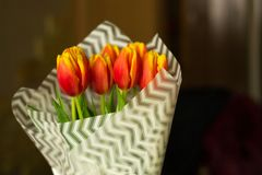 Fresh tulip flowers covered with white paper in vase on blurred background. Celebraiting holidays at home. Love present from. Husband stock image
