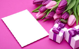Fresh tulip flowers and gifts Royalty Free Stock Photo