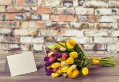 Fresh tulips with blank card on wooden table Stock Photography