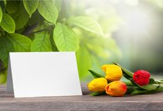 Fresh tulips with blank card on wooden table Stock Photo