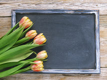 Fresh tulips flowers and empty blackboard on wooden background. Place for text Royalty Free Stock Image
