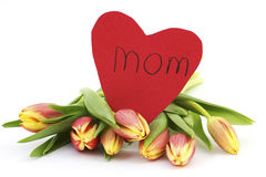 Fresh tulips and heart for mom Royalty Free Stock Photography