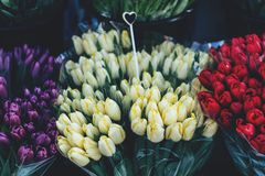 Fresh tulips are sold on a spring royalty free stock image