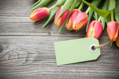 Fresh tulips and tag Stock Photography