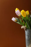 Fresh tulips in vase Stock Photography