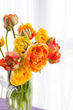 Fresh tulips in a vase Royalty Free Stock Image