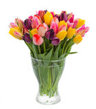 Fresh tulips in vase Stock Photos