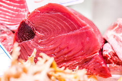 Fresh tuna fish on market display. Fresh tuna fish on cooled market display royalty free stock photo