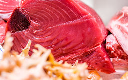 Fresh tuna fish on market display. Fresh tuna fish on cooled market display royalty free stock photography