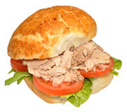 Fresh Tuna Fish Sandwich Roll Stock Photography