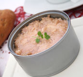 Fresh tuna fish Stock Image