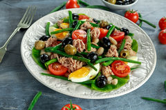 Fresh Tuna Green Bean salad with eggs, tomatoes, beans, olives on white plate. concept healthy food Stock Photos