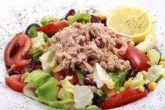 Fresh Tuna Salad Stock Photo