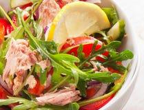Fresh tuna  salad Royalty Free Stock Image