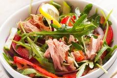Fresh tuna  salad Stock Image