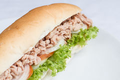 Fresh tuna sandwich baguette Stock Photo
